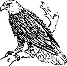 Small Picture Awesome Bald Eagle Coloring Page NetArt
