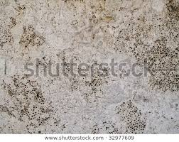 Is marble porous Marble Restoration Porous Marble Wall M Teixeira Unique Surfaces Porous Marble Wall Stock Photo edit Now 32977609 Shutterstock