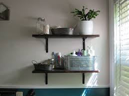 Decorative Bathroom Shelving Baby Nursery Mesmerizing Decorative Shelves For Bathroom