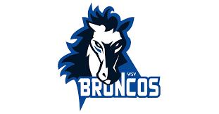 Sterzing Wipptal Broncos Logo neu 2018 – Hockey-News.info