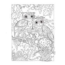 creative haven coloring book owls coloring book books for children secret garden series kill time painting drawing books in books from office