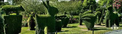 animal garden. Animal Garden T