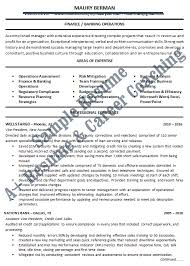 banking and finance loan servicer resume