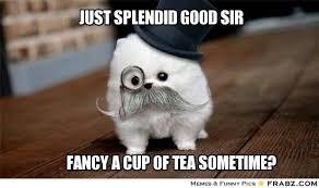 Just splendid good sir... - Meme Generator Captionator via Relatably.com