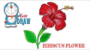 Small Picture How to draw a Hibiscus flower step by step very easy YouTube