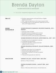 Basic Resume Examples Fascinating It Resume Template Word Elegant Resume Examples 48 Executive