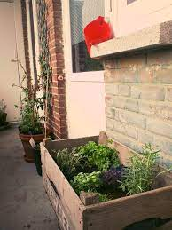 a wooden crate as a planter box