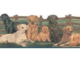 Dogs Wallpaper Border TA39037DB