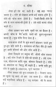 essay on ldquo parrot rdquo in hindi