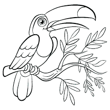 Perform improvisation when coloring this precious m. Birds To Color For Children Birds Kids Coloring Pages