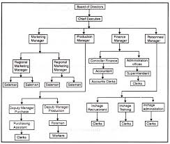 Formal Organizational Chart Organization Charts Types Principles Advantages And
