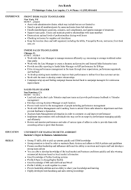 Download Sales Team Leader Resume Sample as Image file