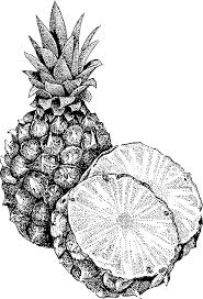 pineapple clipart black and white. pineapple black and white clipart free 7 e