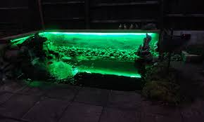 wildlife pond makeovers water features and rgb led strip lighting Rbg Wiring Multiple Lights Pond wildlife pond makeovers water features and rgb led strip lighting dengarden Three-Way Wiring Multiple Lights