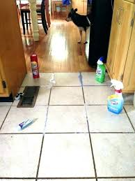 best floor cleaning machine tile amazing