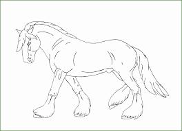 5 Kleurplaten Paarden 88567 Kayra Examples