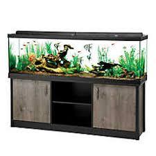 petsmart goldfish tank. Simple Petsmart Aqueon 125 Gallon LED Aquarium Ensemble On Petsmart Goldfish Tank L