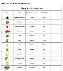 Uterus Size In Cm During Pregnancy Chart Uterine Fibroid Size Chart Www Bedowntowndaytona Com
