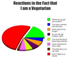 wat mag een vegetariër niet eten