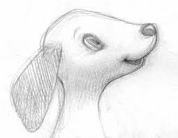 cute puppy drawings in pencil for kids.  Cute I Love Doing Pencil Sketches And Seeing Other Artists Sketches In  My Case They Usually Have So Much More Energy Than The Finished Pieces With Cute Puppy Drawings Pencil For Kids