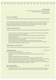 Credit Manager Resume Templates Microsoft Word Doc