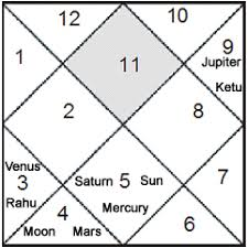 Learn To Read Kundli Chart Astrology Tutorial Houses