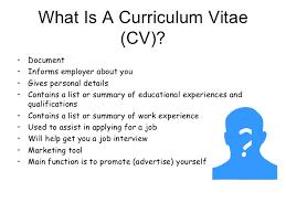 What Is A Curriculum Vitae Gorgeous How To Write A CV