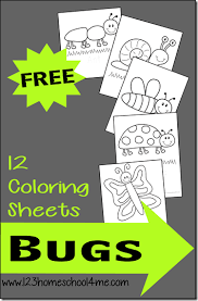 Small Picture 12 FREE Bug Coloring Sheets