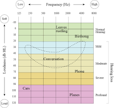 Audiogram Chart Blank How To Choose The Best Hearing Aids Buying Guide Hearing