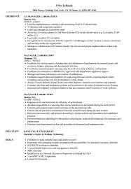 Manager Laboratory Resume Samples Velvet Jobs Sample Job Description