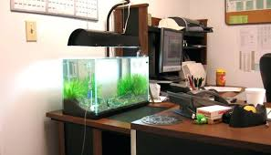 office fish tanks. Office Aquarium Fish Tanks S