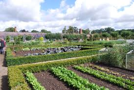 Walled Kitchen Garden Eaton Hall Me And 2 Veg