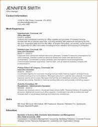 Bank Internal Auditor Resume Business Document