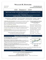Executive Resume Examples Sample Finance Tech Page 1 Pdf