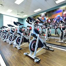 movati athletic cycling cles