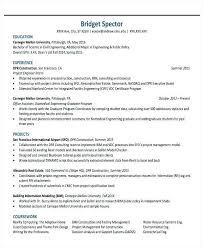 Sample Resume For Engineering Field Engineer Resume Example