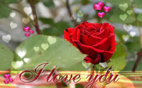 Download Janu Love U Wallpaper Gallery
