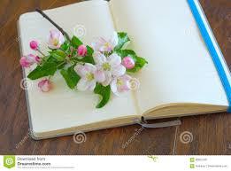 Paper Flower Lyrics Flower Blossom Lyrics Diary Stock Photo Image Of Notes Express