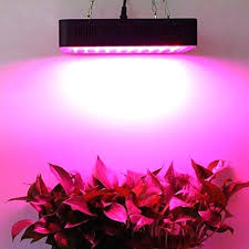 lighting for houseplants. Grow Light For Plants Indoor Led Full Spectrum  Plant Lights With How To Use A Lighting For Houseplants