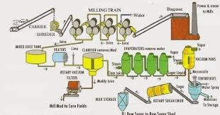 Sugar Production Flow Chart Process Flow Sheets Sugar From Sugar Cane Production