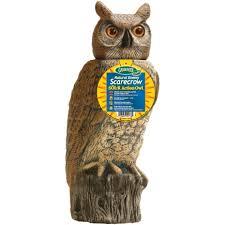 garden owl. tweet garden owl s