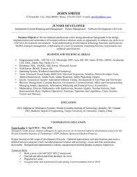 Junior Net Developer Resume Sample