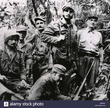 n revolution and fidel castro apush fidel castro p re de n revolution and fidel castro apush fidel castro revolutionary n leader in the thickly forested