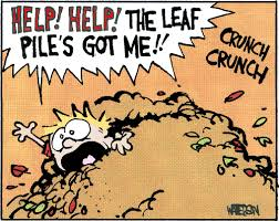 Image result for calvin and hobbes october