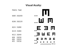 What Is The Meaning Of 6 24 In Eye Vision And What Is The 40