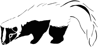 Black White Striped Skunk Coloring Page Free Printable Coloring