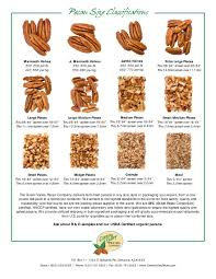 Pecan Size Chart Pecan Size Chart Related Keywords Suggestions Pecan Size