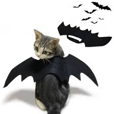 <b>Costumes Pet</b> Supplies <b>Pet</b> Shirt Enjoyment <b>Halloween Pet Bat</b> ...