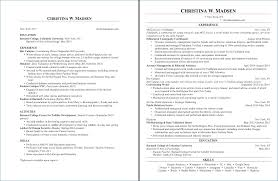 2 Page Resume Delectable Can Resumes Be Two Pages Nppusaorg