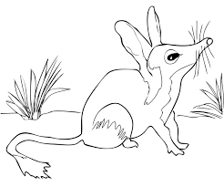 Australian Bilby coloring page emu mask template vosvete net on avery 5216 template
